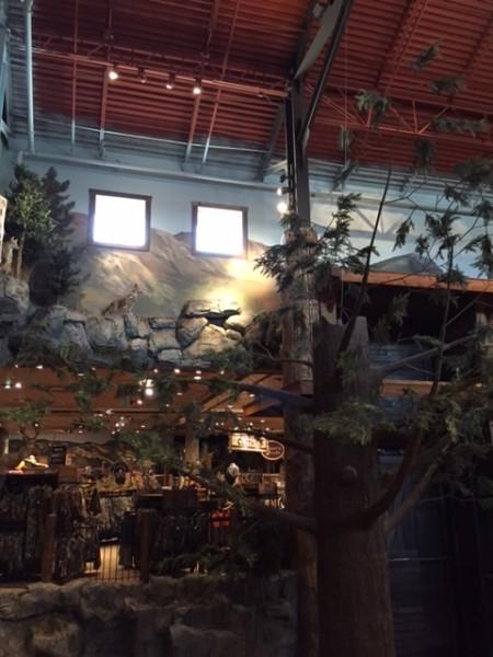 商場中的野外造景與動物標本